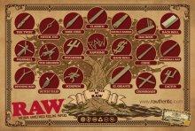 他の写真3: RAW TRIDENT WOODEN CIGAR HOLDER-ロウ 木製シガレットホルダー(3穴/キングサイズ)