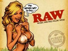 他の写真3: RAW PARCHMENT PAPER ロウ パーチメントペーパー 500枚