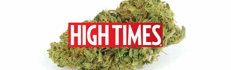 HIGH TIMES/ハイタイムス オフィシャルグッズ